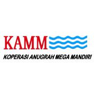 Icon KAMM